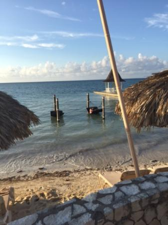 sandals montego bay  hammocks in the water hammocks in the water   picture of sandals montego bay montego      rh   tripadvisor