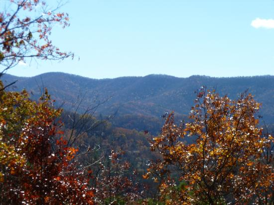 Laurel Mountain Cabins: What a view (from the covered deck on teh back of the cabin)
