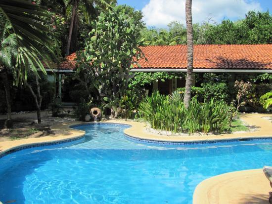 Плайя-Гранде, Коста-Рика: Pool