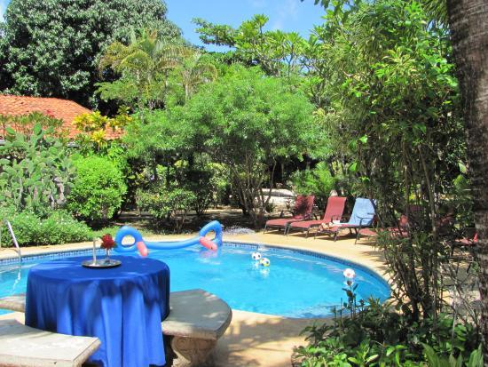 Playa Grande, Kosta Rika: pool