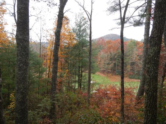 Fairway Forest: View from back upstairs porch