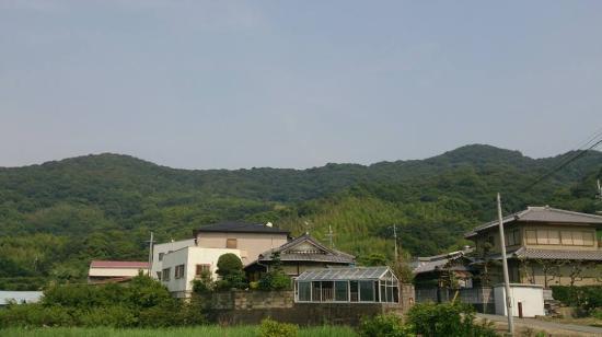 Wasayama Castle Ruin