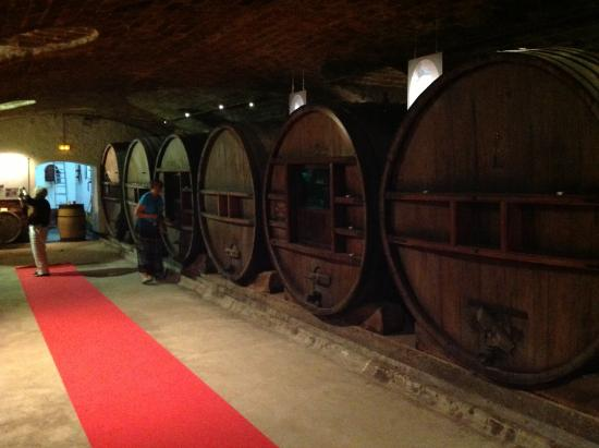 Château de Saint Martin : Barrels not used anymore but being reused for fun.