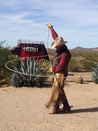 Yucca張圖片