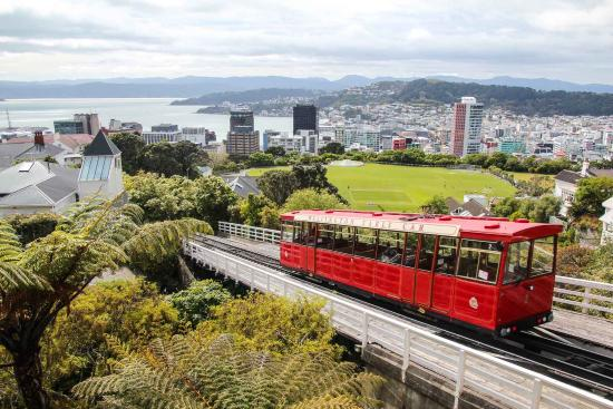 Cable Care From Lookout At Summit Picture Of Wellington Cable