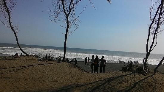 Goa Cemara Beach