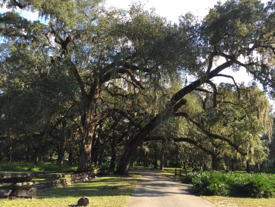 Dade Battlefield Historic State Park
