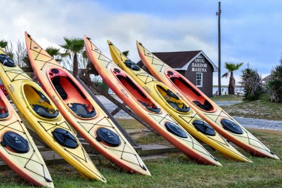 Old Town Canoe and Kayak Assateague Island Tours (Chincoteague