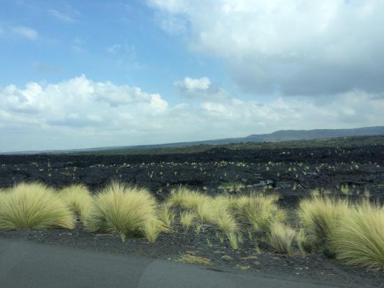 Mamalahoa Highway: photo0.jpg