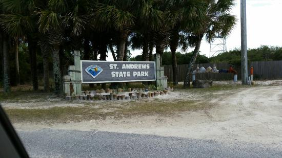 Hiking Saint Andrews State Park Panama City Beach Florida