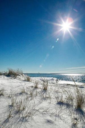 Villas on the Gulf : Beach