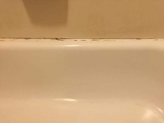 Red Roof Inn El Paso East: Mold Around Tub