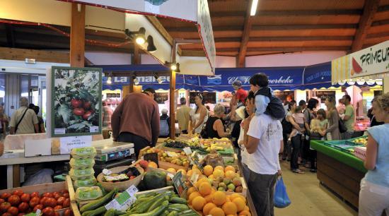 Marché de Saint-jean-de-monts : legumes, maraichers, balade en famille