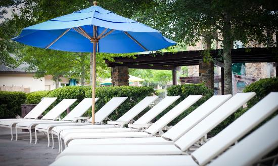 The Woodlands Resort & Conference Center: Loungechairs