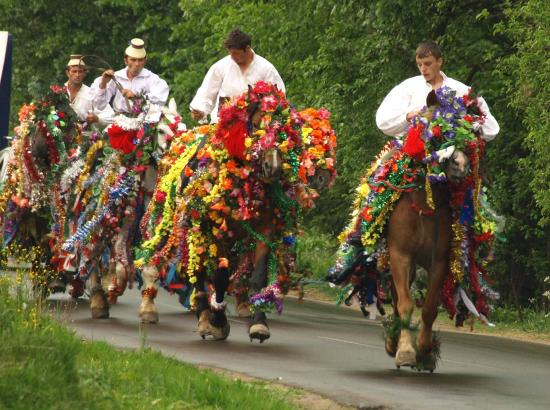 Sighetu Marmatiei, Roemenië: Horsemen going to Maramures traditional wedding
