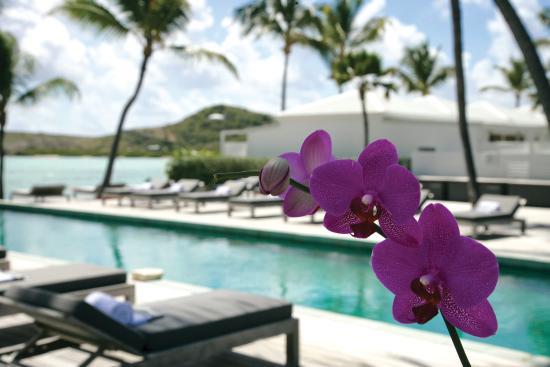 Le Sereno Hotel: Pool