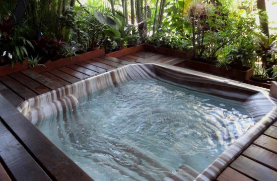 Hotel Villa Tournon: Hot jacuzzi, behind the pool