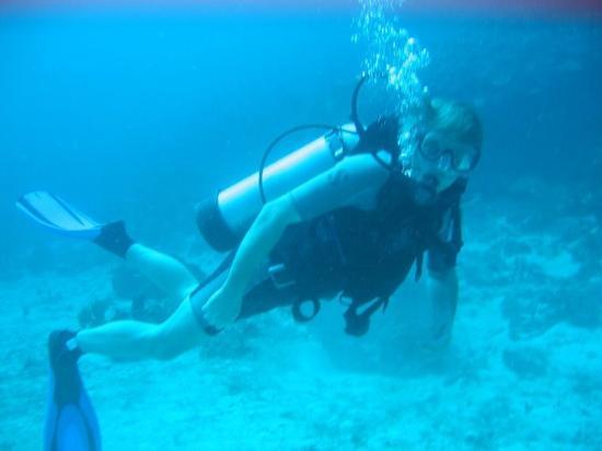 La Bulle Diving Center: La bulle