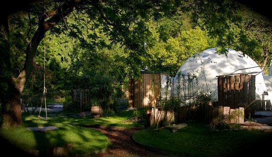Dome Garden: The Dome Garden