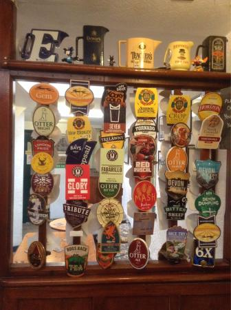 Langton Matravers, UK: Selection of ales