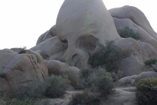 Hidden Valley Campground: skull rock