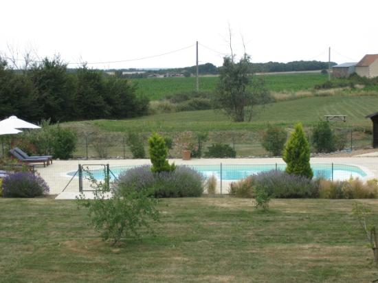 Cussay, Francia: Swimming pool from the gites