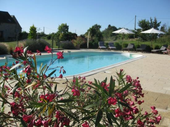 Cussay, France : Plenty of room to relax in and around the pool