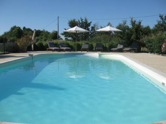 Cussay, França: Plenty of space in the pool and surrounding terrace