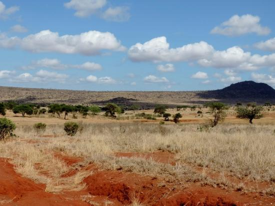 Tanke Tours: weites Land im Tsavo Est