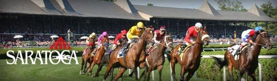 Comfort Suites Clifton Park: Saratoga Race Course
