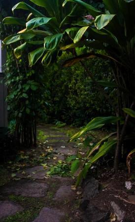 Haena, Havaí: walkway from gate entrance
