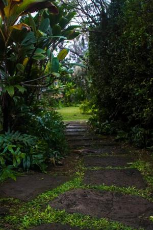 Hale Makai Cottages: walkway