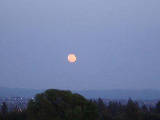 Laguna Woods, CA: Moon view