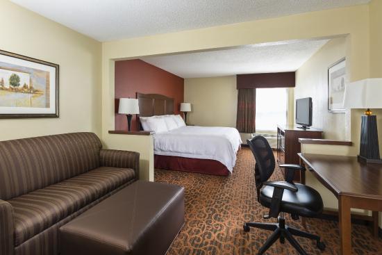 Hampton Inn Battle Creek: Suite