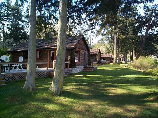 Lonesome Cove Resort: cabin