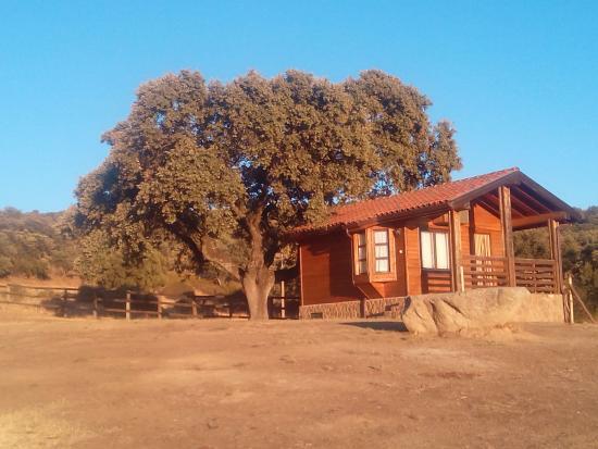 Navamorcuende, España: Cabaña