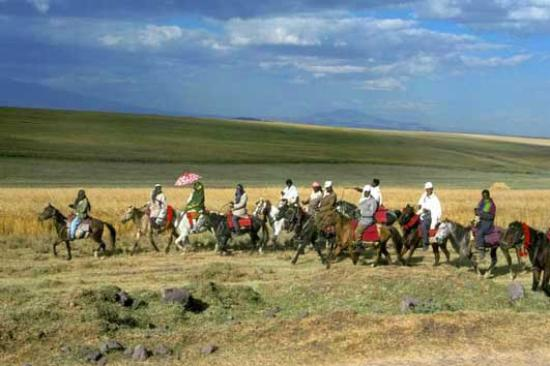 Oromo tribes in Bale Goba