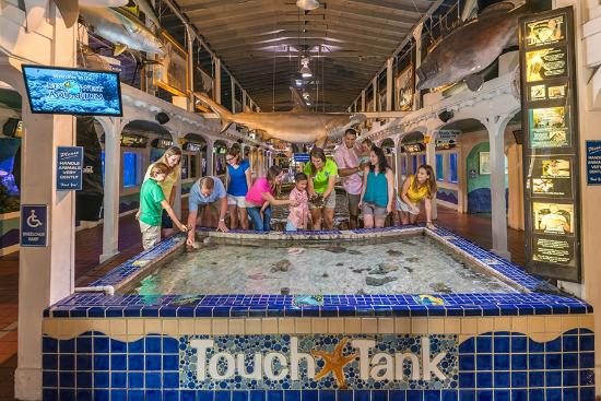 Key West Escape Travel Guide On Tripadvisor