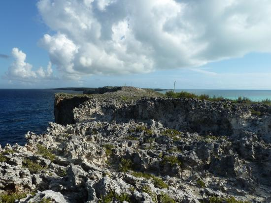 Bahamas Out Island Adventures - Day Trips: Insel
