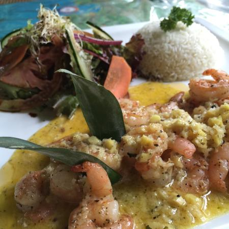 The Bakery Cafe: Special of the day. Shrimp with a curry ginger sauce.
