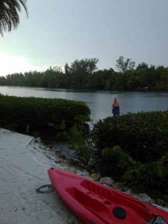 Siesta Key Bungalows: The Lagoon, take a kayak out, watch for jumping fish!!