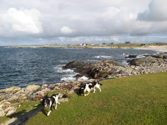 Roundstone, Irland: Gwion & Madog loved the place