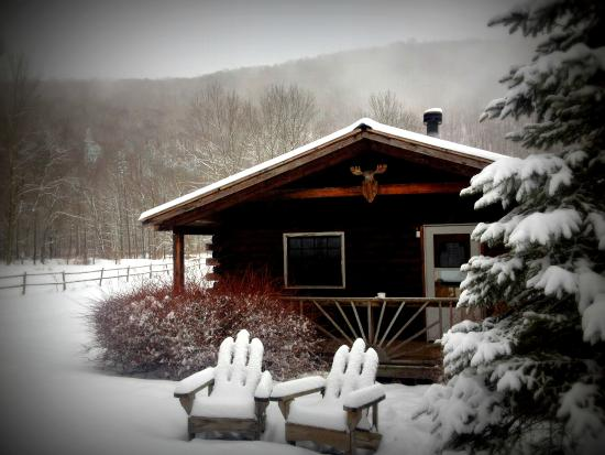 Big Indian, NY: Cabin 6 in winter