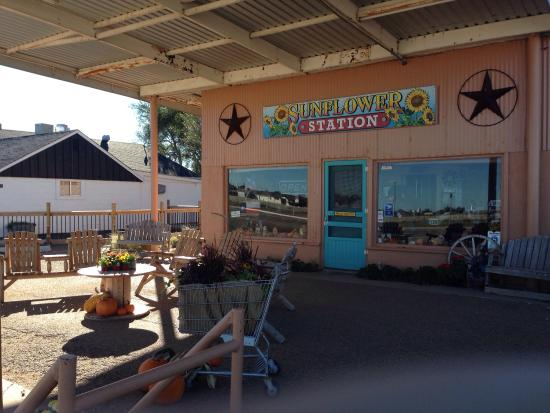 Sunflower Station