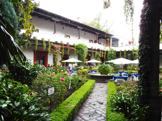 Jardin terraza picture of restaurante antiguo san angel for Cafe el jardin centro historico