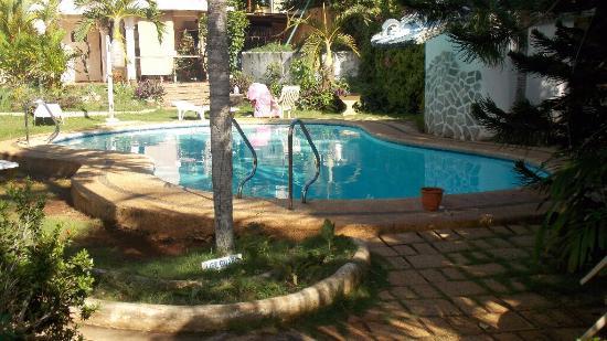 Flower Garden Resort: The Pool, by day.