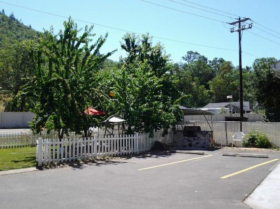 Maple Leaf Motel: Beautiful Cherry Trees