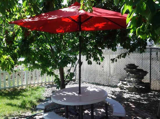 Maple Leaf Motel: Picnic Area