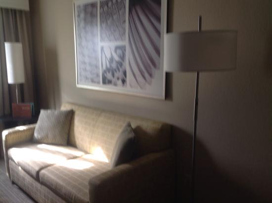 Homewood Suites by Hilton Lake Mary: Living room