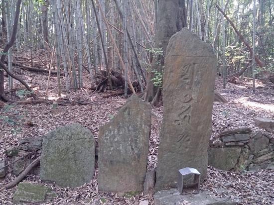 Mt. Takatsumi Kosemmaizochi